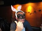 仮装して来てないお客さんも強制的に仮装していただきました(笑)